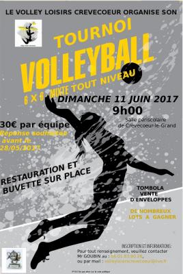 Affiche volley ball 001 001